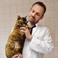 Docteur Thibaud